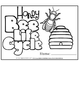 Life Cycle of a Honeybee Flip Book
