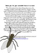 Informational Text and Questions: Life Cycle of a Housefly - Common Core Aligned
