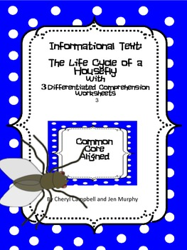 Informational Text and Questions: Life Cycle of a Housefly