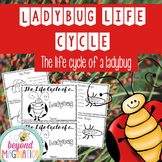 Life Cycle of a Ladybug | 48 Pages for Differentiated Learning + Bonus Pages