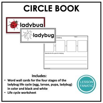 Life Cycle of a Ladybug Circle Book