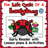 Life Cycle of a Ladybug Emergent Reader ESL Spring Craft W
