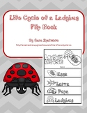 Life Cycle of a Ladybug Flip Book