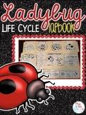 Life Cycle of a Ladybug Lapbook {with 10 foldables} Ladybug Life Cycle INB