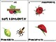 Life Cycle of a Ladybug Mini Books - ESL/ENL, Special Needs, Young Learners