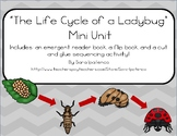Life Cycle of a Ladybug Mini Unit