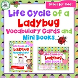 Life Cycle of a Ladybug Vocabulary Cards and Mini Books BUNDLE