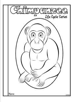 Life Cycle of a Mammal (Chimpanzee) Tab Booklet