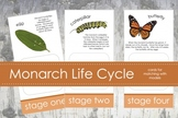 Life Cycle of a Monarch Butterfly; Montessori matching activity for models