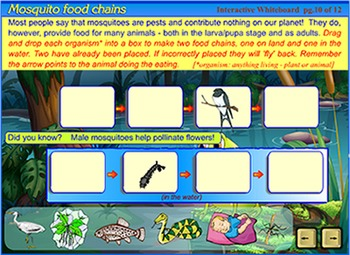 Life Cycle of a Mosquito - a SmartBoard and Interactive Whiteboard lesson