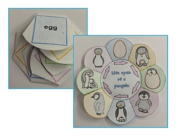 Life Cycle of a Penguin Craft - Interactive Science Crafts Series