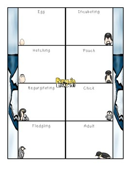 Life Cycle of a Penguin Research Fold-Ems and Activities
