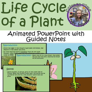 Life Cycle of a Plant ANIMATED PowerPoint with Guided Notes