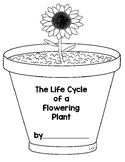 Life Cycle of a Plant Book and Student Milk Carton Garden printout