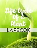 Life Cycle of a Plant Lapbook