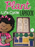 Life Cycle of a Plant Lapbook {with 10 foldables} Flower L