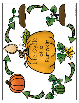 (FREE) Life Cycle of a Pumpkin
