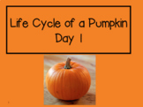 Life Cycle of a Pumpkin 2nd Grade Reading Street Powerpoints