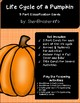 Life Cycle of a Pumpkin | 3 Part Cards PreK | English
