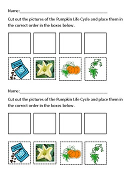 Life Cycle of a Pumpkin Activity can be used with Reading Common Core Unit 3