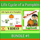 Life Cycle of a Pumpkin BUNDLE 1 (Video & Lapbook)