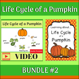 Life Cycle of a Pumpkin BUNDLE 2 (Video & Unit Study)