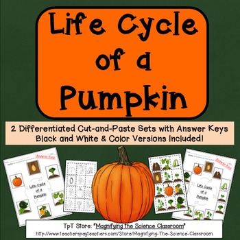 Life Cycle of a Pumpkin Cut and Paste