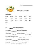 Life Cycle of a Pumpkin Decoder