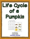 Life Cycle of a Pumpkin {FREEBIE}