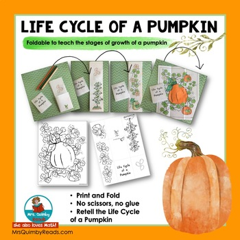 Life Cycle of a Pumpkin - Foldable Booklet - Learn the stages of a Pumpkin