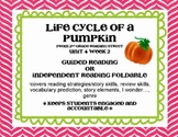 Life Cycle of a Pumpkin Foldable Scott Foresman Reading St