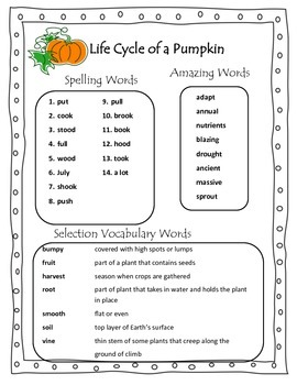 Life Cycle of a Pumpkin Grade 2 Reading Street Common Core 2013