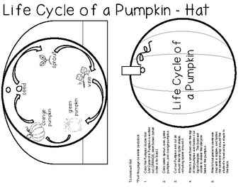 Life Cycle of a Pumpkin - Hat!