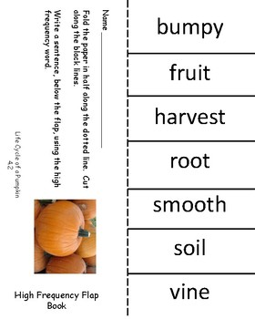 Life Cycle of a Pumpkin High Frequency Flap Book