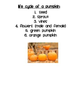 Life Cycle of a Pumpkin Writing