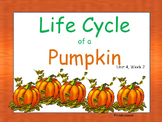 Life Cycle of a Pumpkin, Interactive PowerPoint, 2nd Grade