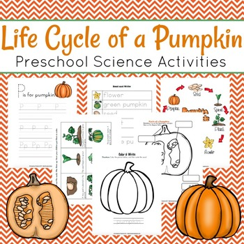 Life Cycle of a Pumpkin Learning Pack