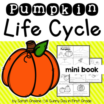 Life Cycle of a Pumpkin {Mini Book!}