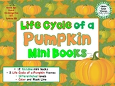 Life Cycle of a Pumpkin Mini Books - ESL/ENL, Special Needs, Young Learners