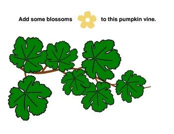 Life Cycle of a Pumpkin Playdough Mats