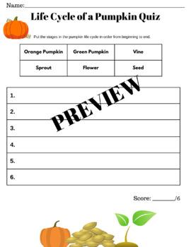 Life Cycle of a Pumpkin Quiz