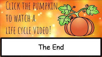 Life Cycle of a Pumpkin Reader - Google Classroom