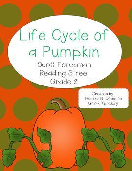 Life Cycle of a Pumpkin : Reading Street : Grade 2