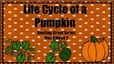 Life Cycle of a Pumpkin {Reading Street Series Grade 2}