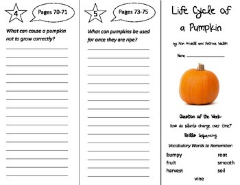 Life Cycle of a Pumpkin Trifold - Reading Street 2nd Grade Unit 4 Week 2
