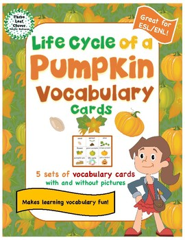 Life Cycle of a Pumpkin Vocabulary Cards - Great for ESL/ENL