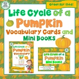 Life Cycle of a Pumpkin Vocabulary Cards and Mini Books BUNDLE