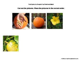 Life Cycle of a Pumpkin by Fridell and Walsh Activities