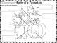 Life Cycle Of A Pumpkin Unit