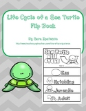 Life Cycle of a Sea Turtle Flip Book